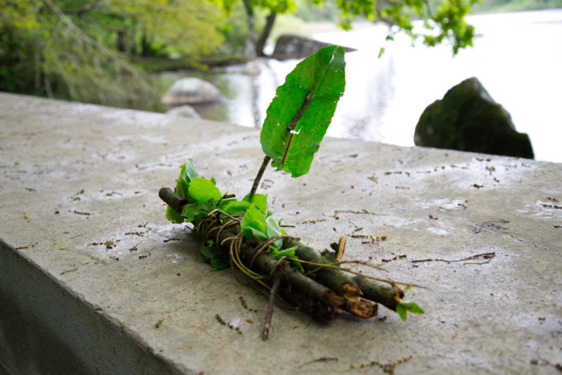 L'art de jouer en forêt, par les enfants Verts